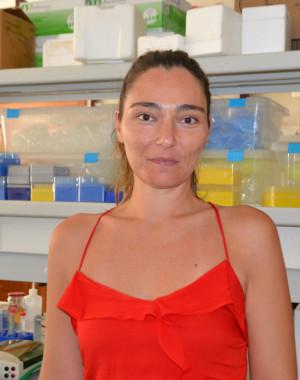 Vânia P. Roberto's picture